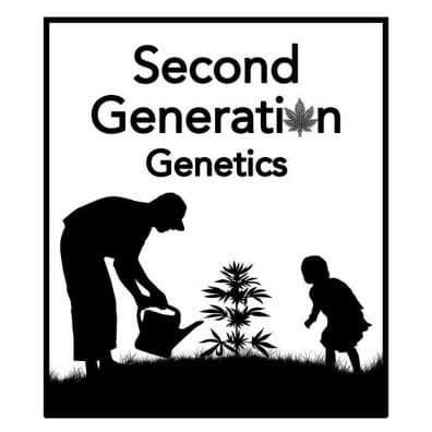 Second Generation Genetics