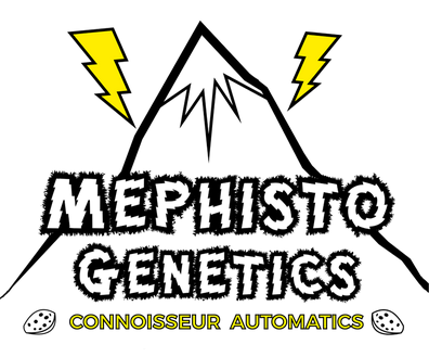 Mephisto Genetics Feminized Autoflower Seeds