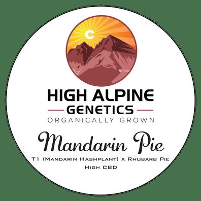 Mandarin Pie F1 (T1 x Rhubarb Pie) 10 Regular High CBD Seeds