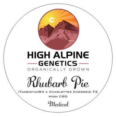 Rhubarb Pie F2 (TangistanR4 x Charlottes Cherries) 10 Regular High CBD Seeds