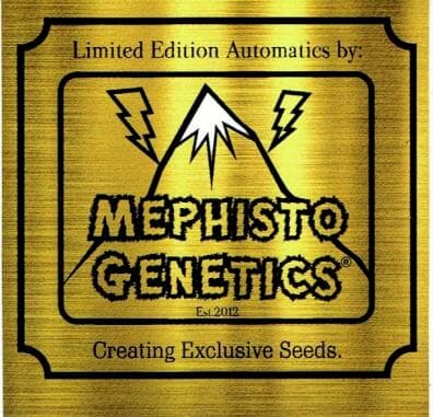 Mephisto Limited Editions Automatics