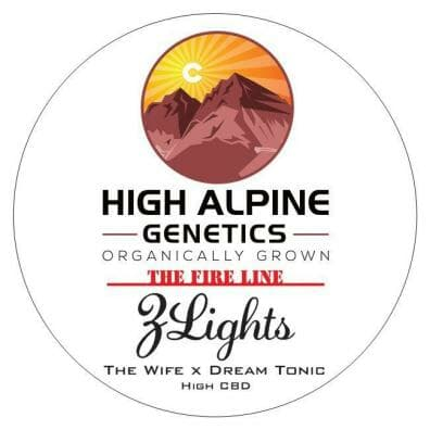 ZLights (The Wife x Dream Tonic) 10 Regular High CBD Seeds