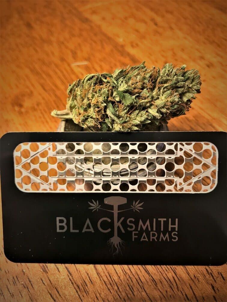 what are autoflowering marijuana seeds